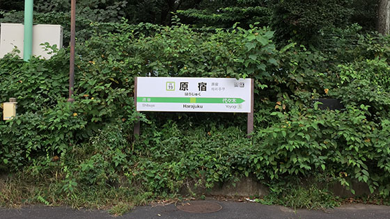s2016_1014_0648_IMG_9904原宿