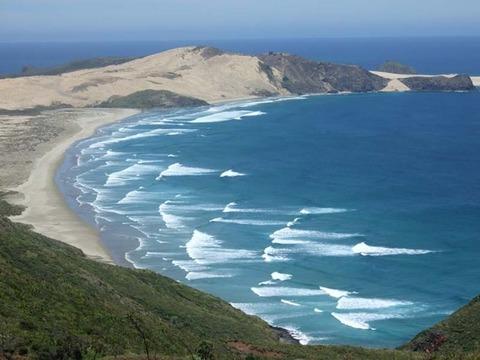 【NZ】レインガ岬バスツアー
