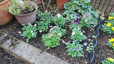 花壇 1-4
