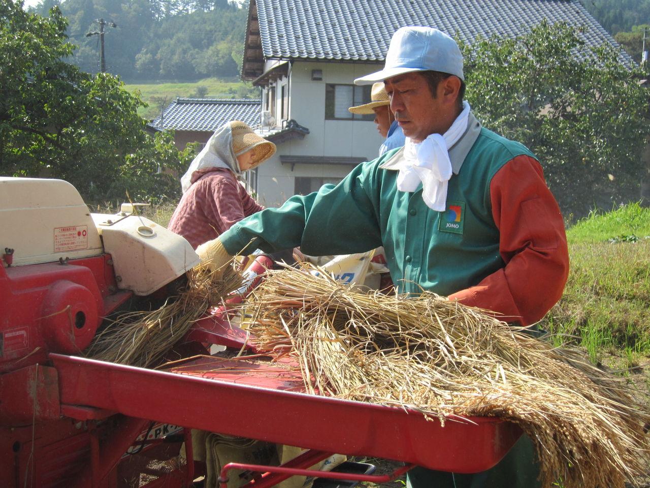 ヨッシーのスタッフブログ(吉村一建設 公式ブログ)カテゴリ:堺市新築一戸建収穫