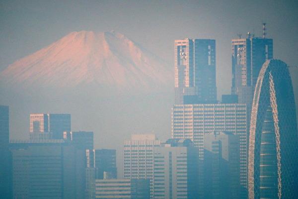 富士山 新宿都庁