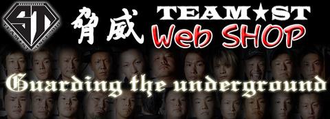 ST-webショッピング