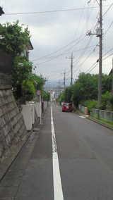 26fcab0a.jpg