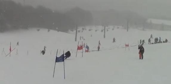 スキー インターハイ