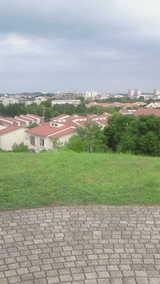 bfedc849.jpg