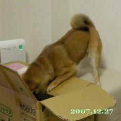 2007/12/27_2