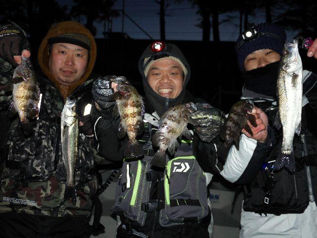 名古屋港 シーバス メバル