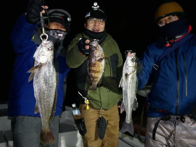 名古屋港 シーバス 根魚 メバル