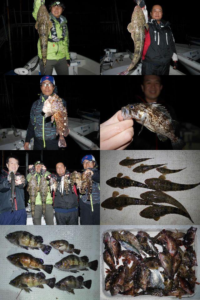 マゴチ メバル 根魚 釣果写真