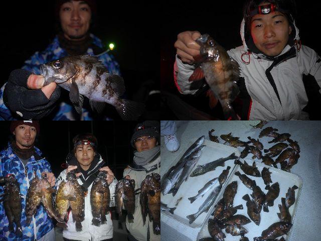 メバル&根魚 釣果写真