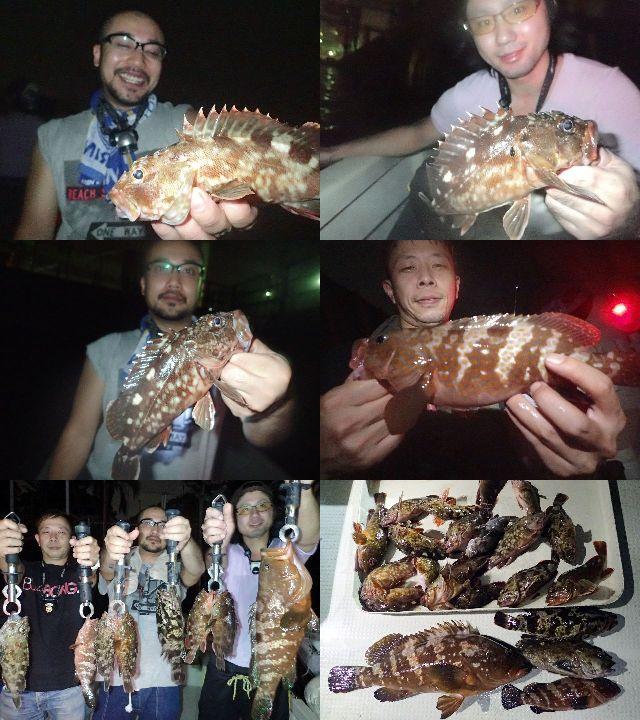 キジハタ&根魚 釣果写真