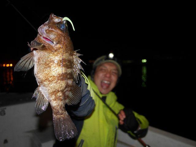 名古屋港 メバル (2)