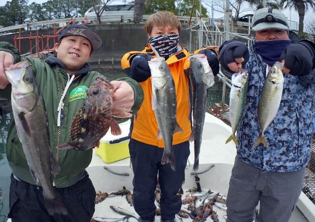 名古屋港 シーバス根魚