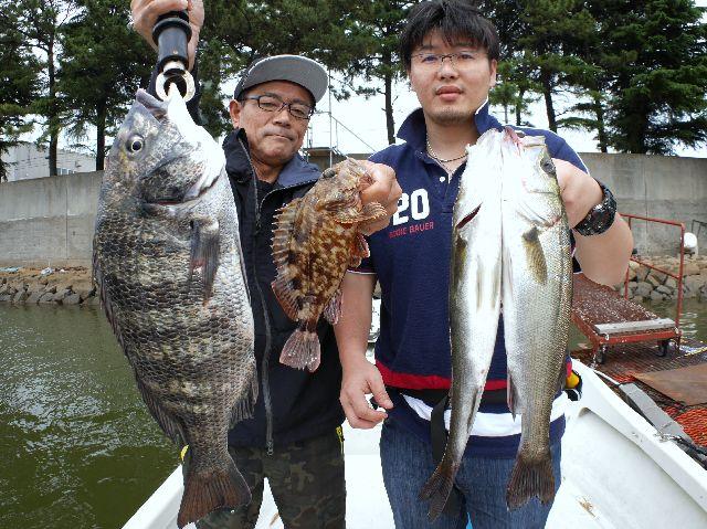 名古屋港 根魚 クロダイ シーバス