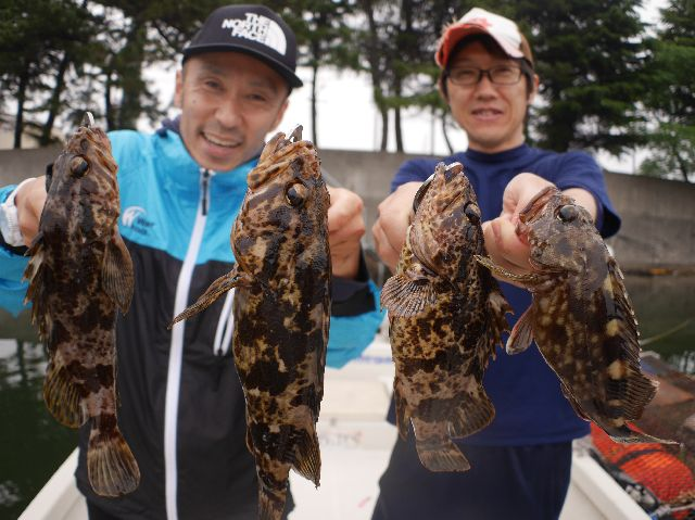 名古屋港 根魚