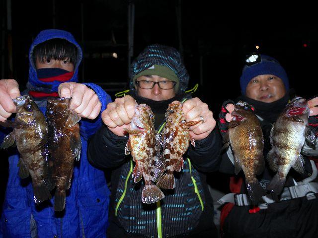 名古屋港 メバル&根魚