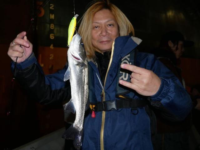 SHINKAIさん シーバス