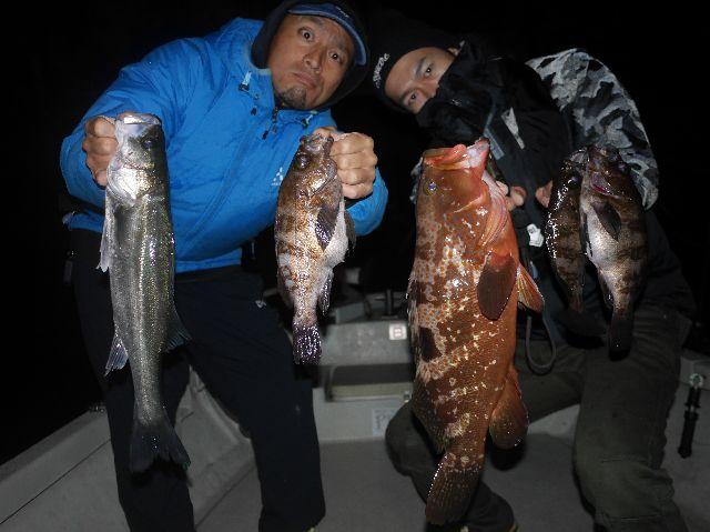 名古屋港 メバル マゴチ キジハタ 根魚 シーバス