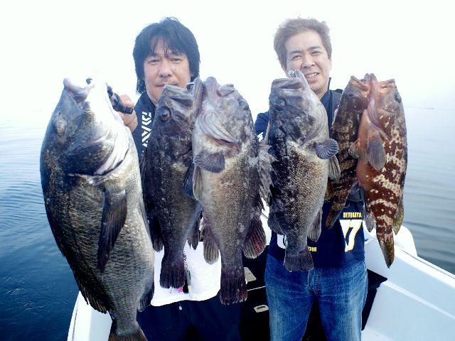 名古屋港 キジハタ&クロソイ&根魚
