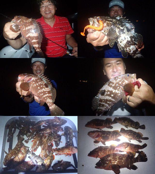キジハタ カサゴ 釣果写真