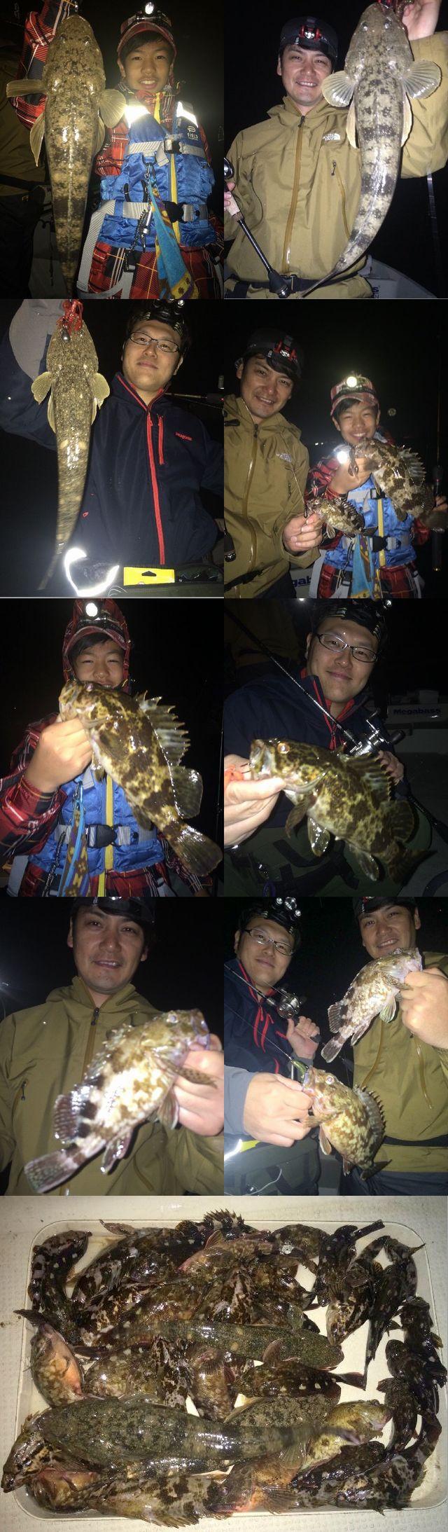 マゴチ&根魚 釣果写真