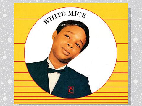 white_mice_01a