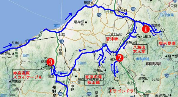 11新潟(紅葉)