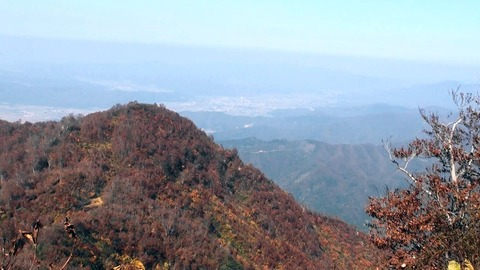 八海山14