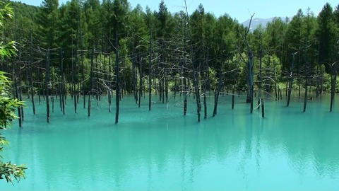 熟年夫婦青い池2