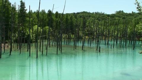 青い池17