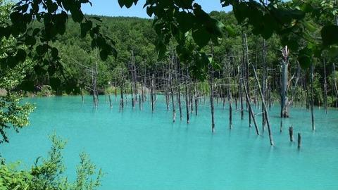 青い池16