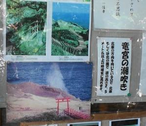 熟年夫婦ブログ元乃隅稲成神社8