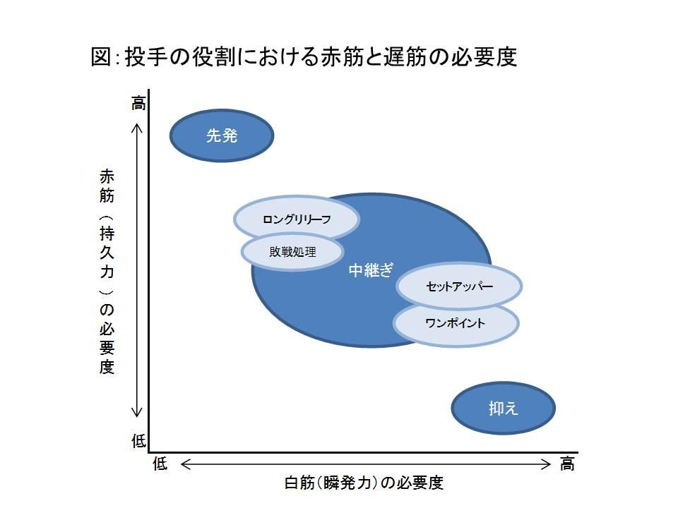 図:投手の役割における赤筋と白筋の重要度