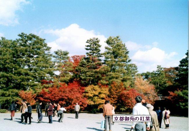 kyoutogoshonoaki05-burogu
