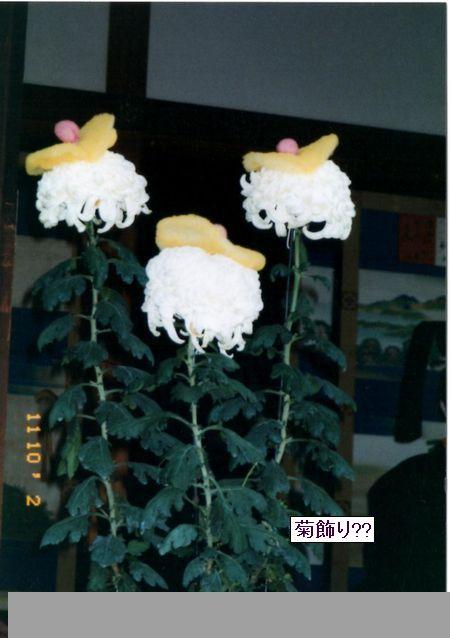 kyoutogoshonoaki04-burogu