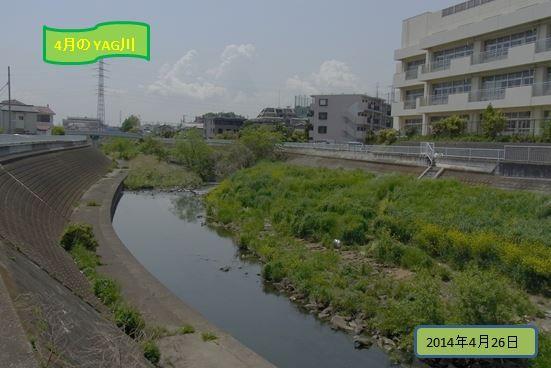 yagkawazoi-yasou201404-03-burogu