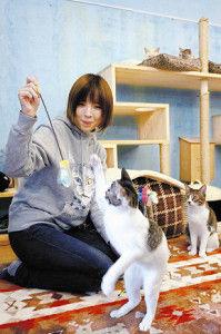 【奈良】ニャンとかしたい…絆つなぐ「保護猫」カフェ