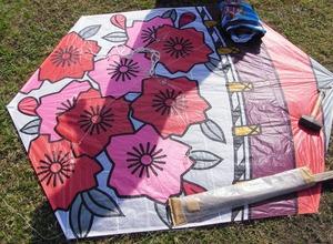 浜松国際凧揚げ大会 11