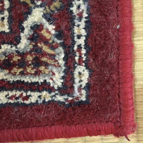 100均で猫の毛対策|ダイソーの洋服用毛玉取りブラシでカーペット掃除 ビフォー