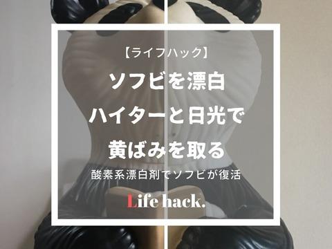 ライブドアひながた (13)