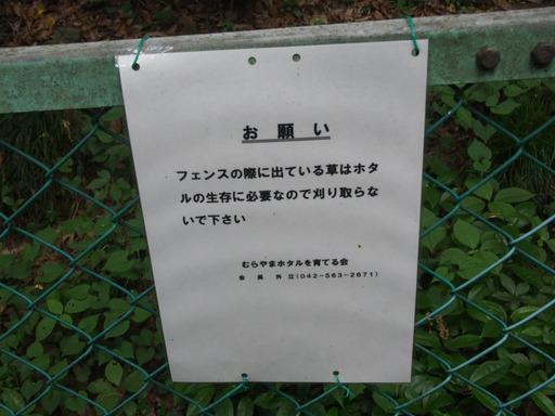 20170604・武蔵村山の秘密基地2-12・中
