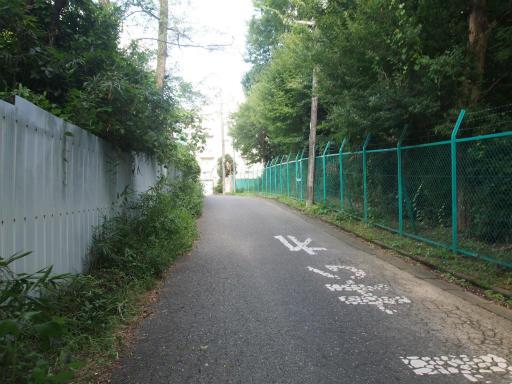 20170903・秋の狭山湖散歩24