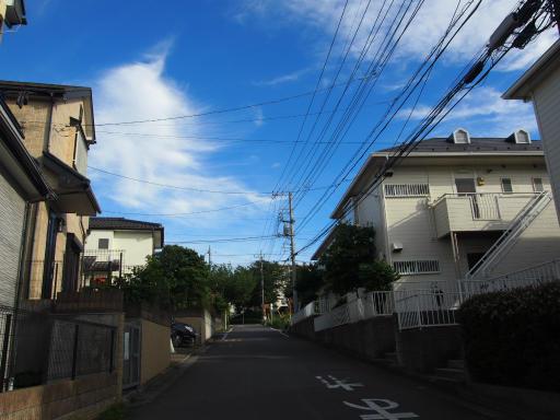 20180630・近所の空を見る散歩04