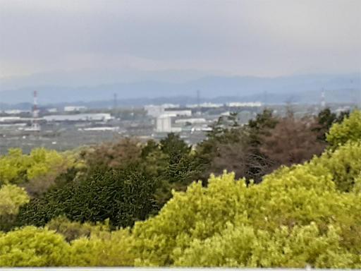 20210409・桜山展望台とあけぼの子どもの森07