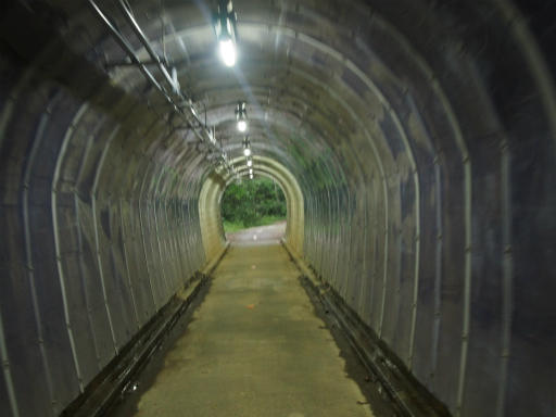 20170604・武蔵村山の秘密基地2-21
