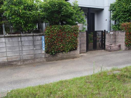 20170604・武蔵村山の秘密基地2-18