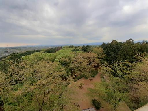 20210409・桜山展望台とあけぼの子どもの森03
