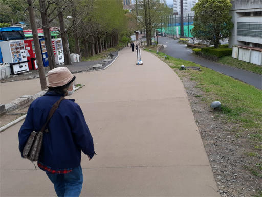 20210409・桜山展望台とあけぼの子どもの森11