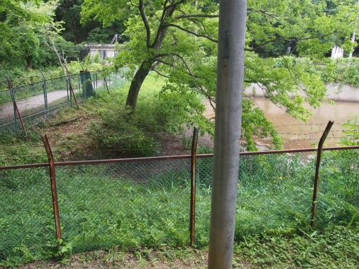 20170604・武蔵村山の秘密基地2-14・番太池