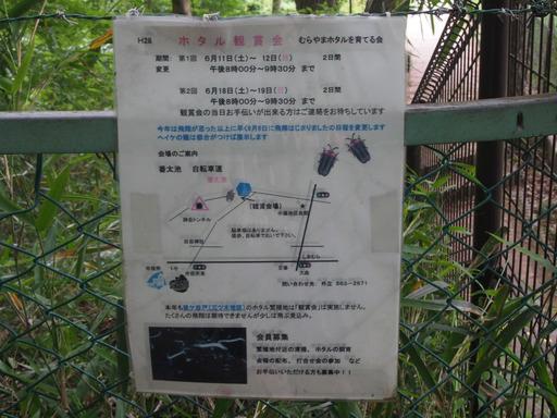 20170604・武蔵村山の秘密基地2-13・中